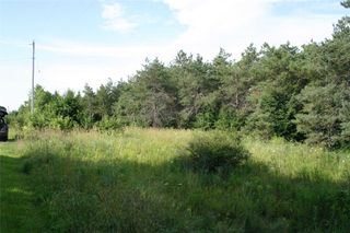 Photo 13: Lot 2 Con 3 in Mulmur: Rural Mulmur Property for sale : MLS®# X4807127
