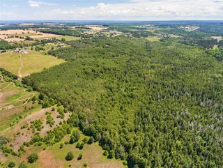 Photo 7: Lot 2 Con 3 in Mulmur: Rural Mulmur Property for sale : MLS®# X4807127