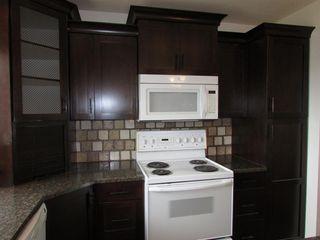 Photo 42: 603 4 Avenue SW: Sundre Detached for sale : MLS®# A1013576