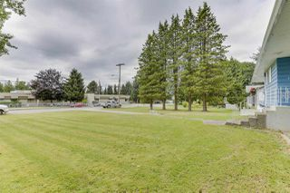 Photo 5: 12194 206 Street in Maple Ridge: Northwest Maple Ridge House for sale : MLS®# R2479170