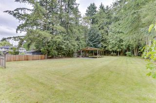 Photo 22: 12194 206 Street in Maple Ridge: Northwest Maple Ridge House for sale : MLS®# R2479170