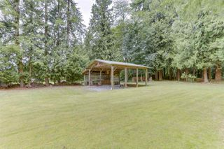 Photo 23: 12194 206 Street in Maple Ridge: Northwest Maple Ridge House for sale : MLS®# R2479170