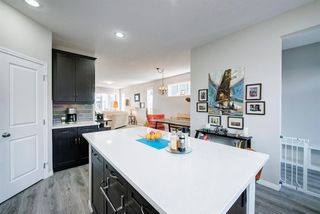 Photo 11: 481 MIDTOWN Parkway SW: Airdrie Semi Detached for sale : MLS®# A1019807