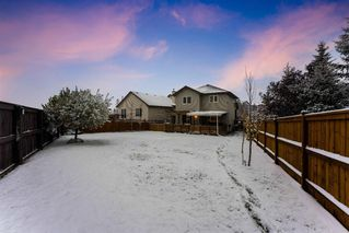 Photo 34: COVENTRY HILLS in Airdrie: Calgary Detached for sale