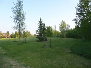Photo 19: 5924 172 Street NW in Edmonton: Zone 20 Carriage for sale : MLS®# E4168763