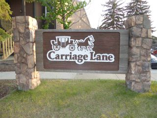 Photo 21: 5924 172 Street NW in Edmonton: Zone 20 Carriage for sale : MLS®# E4168763