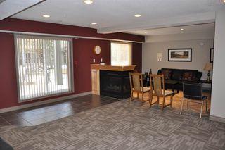 Photo 22: 336 279 Suder Greens Drive in Edmonton: Zone 58 Condo for sale : MLS®# E4175354