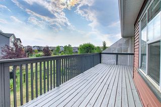 Photo 20: 263 SAGEWOOD Drive SW: Airdrie Detached for sale : MLS®# A1030042