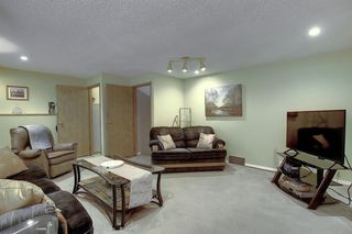 Photo 21: 305 Martinwood Place NE in Calgary: Martindale Detached for sale : MLS®# A1038589