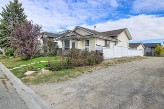 Photo 29: 305 Martinwood Place NE in Calgary: Martindale Detached for sale : MLS®# A1038589