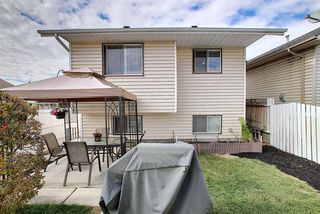 Photo 26: 305 Martinwood Place NE in Calgary: Martindale Detached for sale : MLS®# A1038589