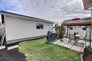 Photo 28: 305 Martinwood Place NE in Calgary: Martindale Detached for sale : MLS®# A1038589