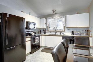Photo 3: 305 Martinwood Place NE in Calgary: Martindale Detached for sale : MLS®# A1038589