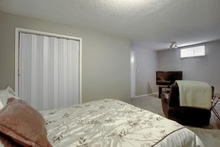 Photo 23: 305 Martinwood Place NE in Calgary: Martindale Detached for sale : MLS®# A1038589