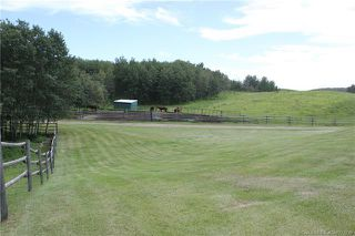 Photo 40: 41405 Range Road 231: Rural Lacombe County Detached for sale : MLS®# CA0173239