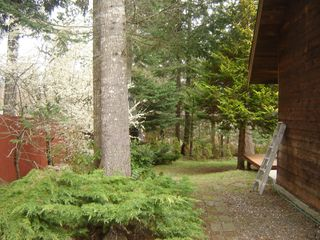 Photo 9: 324 HERONDALE ROAD in ROYSTON: Comox Valley Residential Detached for sale (Vancouver Island/Smaller Islands)  : MLS®# 231604