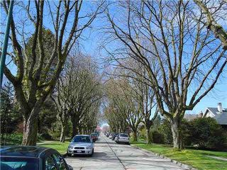 Photo 5: 3513 W 19TH Avenue in Vancouver: Dunbar House for sale (Vancouver West)  : MLS®# R2399055