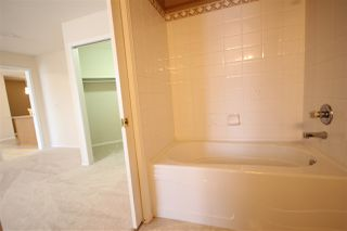 Photo 18: 310 6623 172 Street NW in Edmonton: Zone 20 Condo for sale : MLS®# E4183573