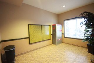 Photo 2: 310 6623 172 Street NW in Edmonton: Zone 20 Condo for sale : MLS®# E4183573