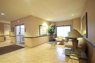 Photo 4: 310 6623 172 Street NW in Edmonton: Zone 20 Condo for sale : MLS®# E4183573