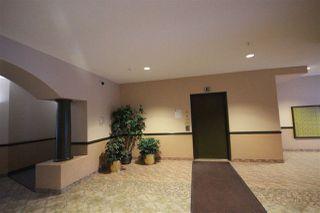 Photo 6: 310 6623 172 Street NW in Edmonton: Zone 20 Condo for sale : MLS®# E4183573
