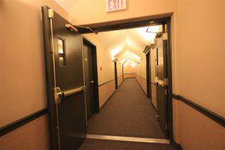 Photo 7: 310 6623 172 Street NW in Edmonton: Zone 20 Condo for sale : MLS®# E4183573