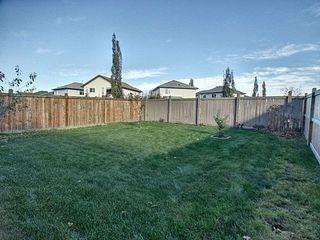 Photo 20: 14103 138 Street in Edmonton: Zone 27 House for sale : MLS®# E4188766