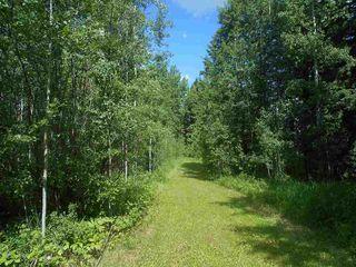 Photo 43: #6, 49022 Range Road 80: Rural Brazeau County House for sale : MLS®# E4202557