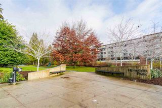 """Photo 3: 211 1621 HAMILTON Avenue in North Vancouver: Mosquito Creek Condo for sale in """"Heywood on the Park"""" : MLS®# R2524600"""