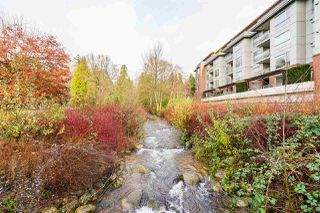 """Photo 19: 211 1621 HAMILTON Avenue in North Vancouver: Mosquito Creek Condo for sale in """"Heywood on the Park"""" : MLS®# R2524600"""