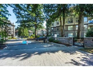 "Photo 1: 302 33328 E BOURQUIN Crescent in Abbotsford: Central Abbotsford Condo for sale in ""Nature's Gate"" : MLS®# R2388344"