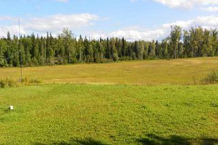 Photo 17: 1334 POPLAR PARK Road: Hazelton House for sale (Smithers And Area (Zone 54))  : MLS®# R2400834