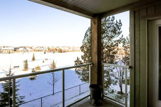 Photo 26: 321 278 SUDER GREENS Drive in Edmonton: Zone 58 Condo for sale : MLS®# E4180487