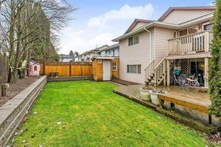 Photo 18: 9230 210 Street in Langley: Walnut Grove House for sale : MLS®# R2425144