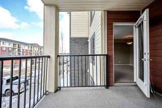 Photo 18: 210 5816 MULLEN Place in Edmonton: Zone 14 Condo for sale : MLS®# E4189698