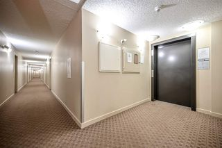 Photo 4: 210 5816 MULLEN Place in Edmonton: Zone 14 Condo for sale : MLS®# E4189698