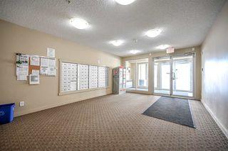 Photo 3: 210 5816 MULLEN Place in Edmonton: Zone 14 Condo for sale : MLS®# E4189698