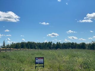 Photo 7: 100 50428 Range Road 234: Rural Leduc County Rural Land/Vacant Lot for sale : MLS®# E4208601