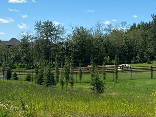 Photo 3: 100 50428 Range Road 234: Rural Leduc County Rural Land/Vacant Lot for sale : MLS®# E4208601