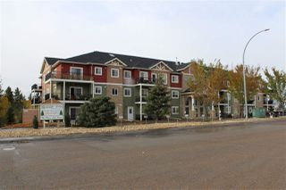 Photo 22: 203 4922 52 Street: Gibbons Condo for sale : MLS®# E4209240