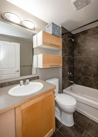 Photo 18: 7 316 22 Avenue SW in Calgary: Mission Apartment for sale : MLS®# A1059873