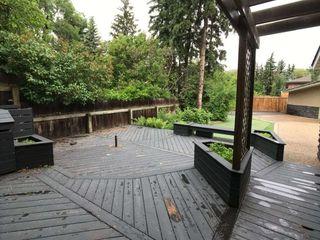 Photo 19: 14002 95 Avenue in Edmonton: Zone 10 House for sale : MLS®# E4168585