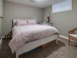 Photo 17: 4036 120 Street in Edmonton: Zone 16 House for sale : MLS®# E4170586