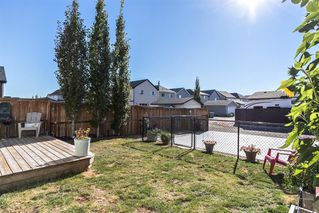 Photo 29: 210 COPPERPOND Boulevard SE in Calgary: Copperfield Detached for sale : MLS®# A1032379