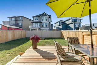 Photo 20: 290 Hillcrest Heights SW: Airdrie Detached for sale : MLS®# A1039457