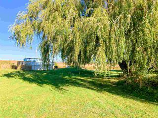 Photo 28: 48 Avonport Station Road in Avonport: 404-Kings County Residential for sale (Annapolis Valley)  : MLS®# 202021364