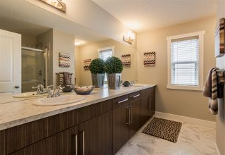 Photo 22: 9812 224 Street in Edmonton: Zone 58 House for sale : MLS®# E4223380
