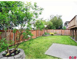 Photo 10: 8864 204A Street in Langley: Walnut Grove House for sale : MLS®# F2812897