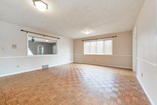 Photo 22: 256 WOLF RIDGE Close in Edmonton: Zone 22 House for sale : MLS®# E4170832