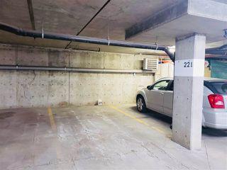Photo 19: 203 279 SUDER GREENS Drive in Edmonton: Zone 58 Condo for sale : MLS®# E4199981
